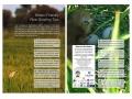 Bittern-Friendly-Rice-Growing-Tips-2014-1024x768.jpg
