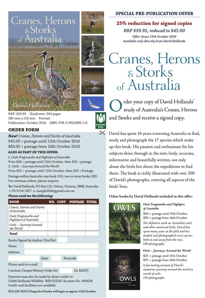 cranes-herons-and-storks-promotional-flyer_a4_1-up