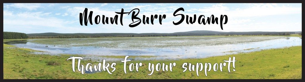 web-banner-mt-burr-swamp-thanks-for-support-lower-res-1024x276